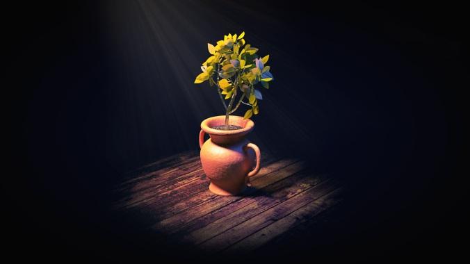 houseplant-2056357.jpg